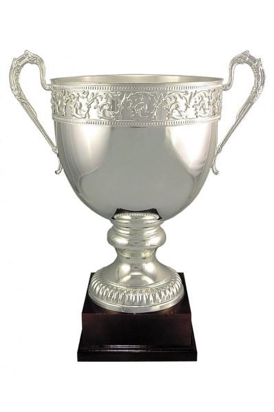 Italian Cup 6