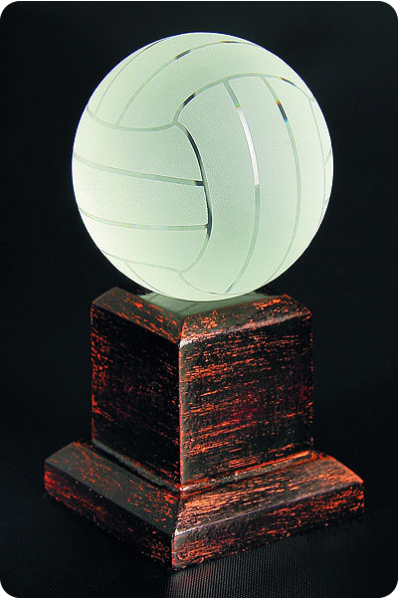 The Vollayball Trophy
