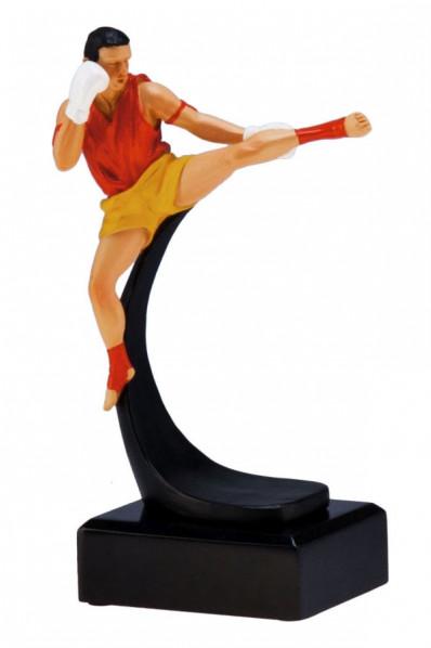 Karate Award