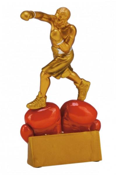 Boxing Award