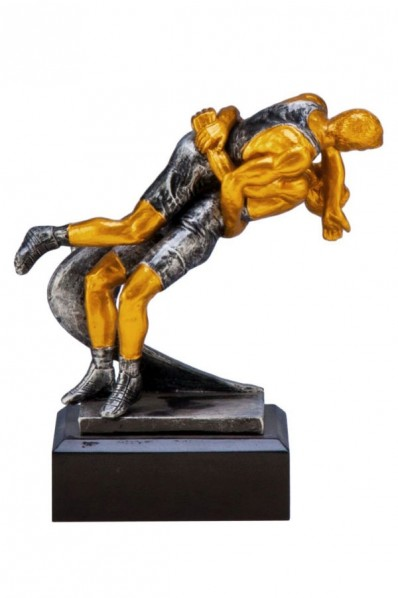 Wrestling Award II