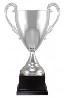 Italian Cup 9