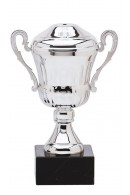 Prime cup 1