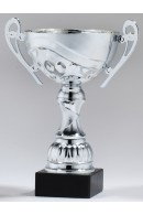 Prime cup 6