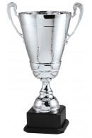 Italian Cup 12