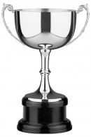 Winner's Cup 2