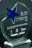 The Immersed Star Plaque