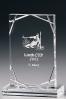 Rectangular Glass Plaque 10